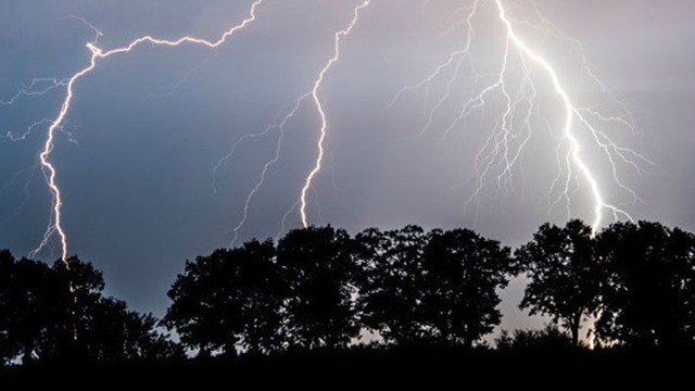 9 killed in Lightning in 4 dists