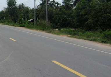 Govt moves to construct 317 km border roads